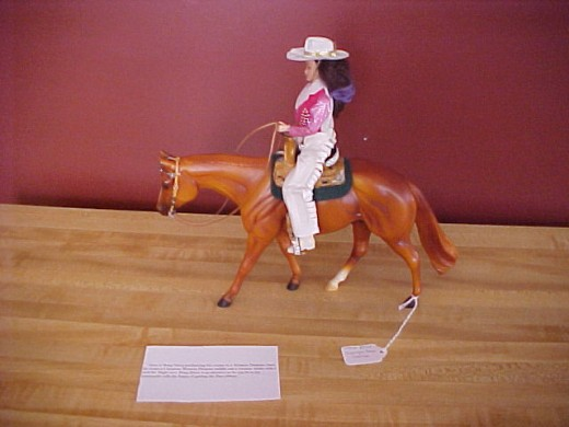 This is what an entry for Western Pleasure would look like complete with an information card.