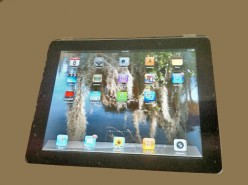 SENIORS! Are You ready for an iPad? Expand your horizons using a tablet as your personal assistant.