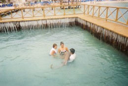 Swim with Sharks in Cancun Mexico