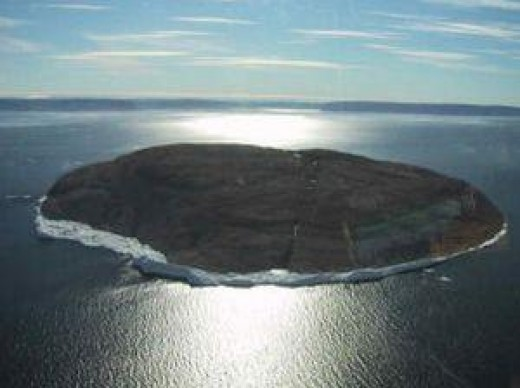 Hans Island in summer