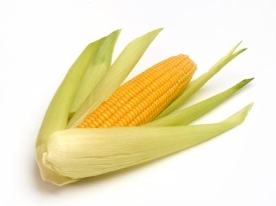 Internet Corn?