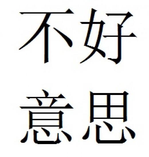 Pinyin pronouciation: bu4 hao3 yi4 si