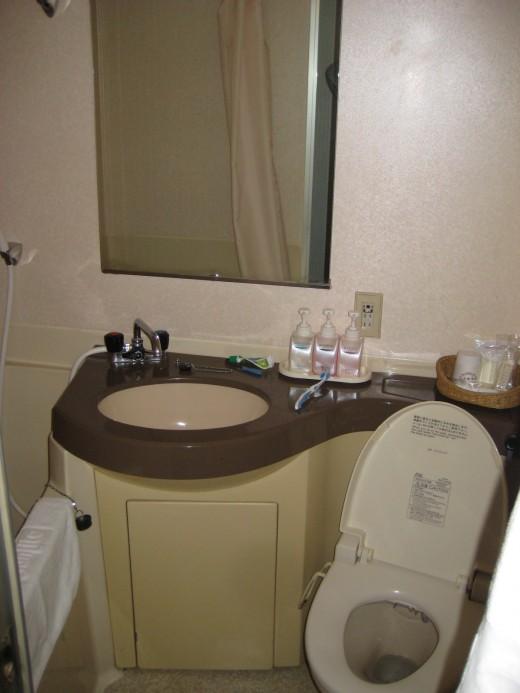 Tiny bathroom but adequate