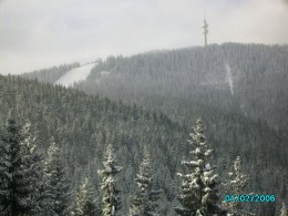 Cold and altitude environmental stress can lead to immunosuppression.