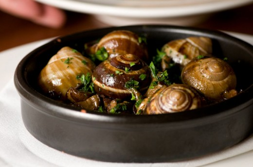 snails fried with wild garlic