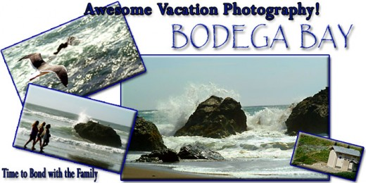 A Bodega Bay Shorline Vacation has everything your family can imagine!