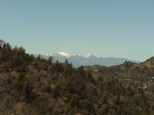 Mount Baldy in the distance.