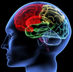 What is a Subarachnoid Haemorrhage and how does it affect the brain?