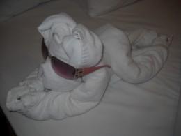 A puppy towel sculpture.