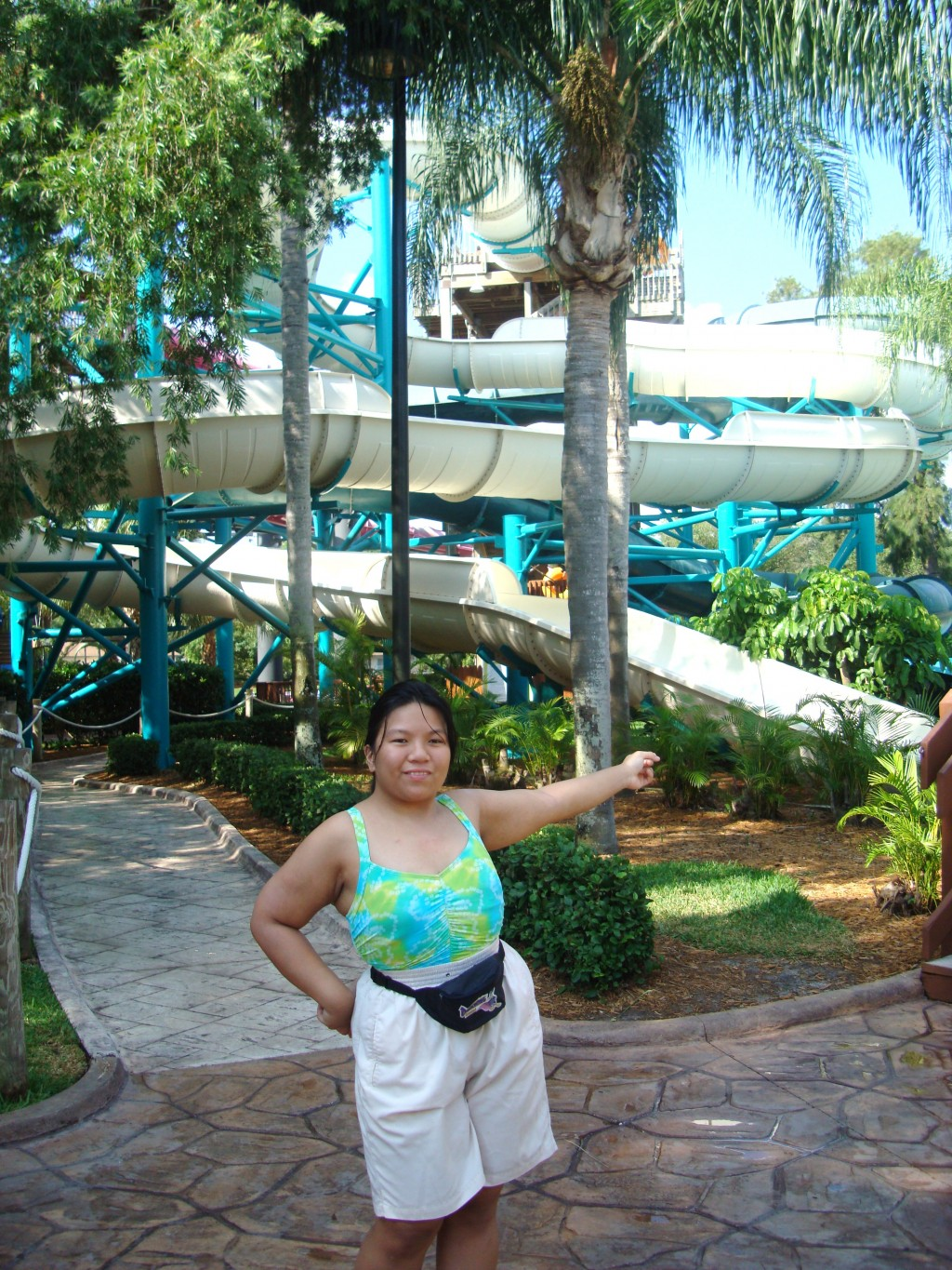 Adventure island water slides attractions of tampa bay s Busch gardens tampa water park