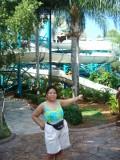 Adventure Island Water Slides - Attractions of Tampa Bay's Busch Gardens Water Park