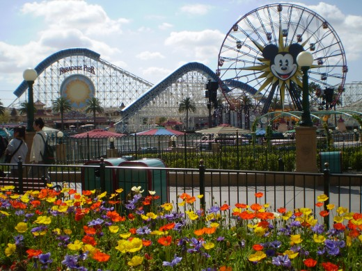 California Adventure at Disneyland Resort
