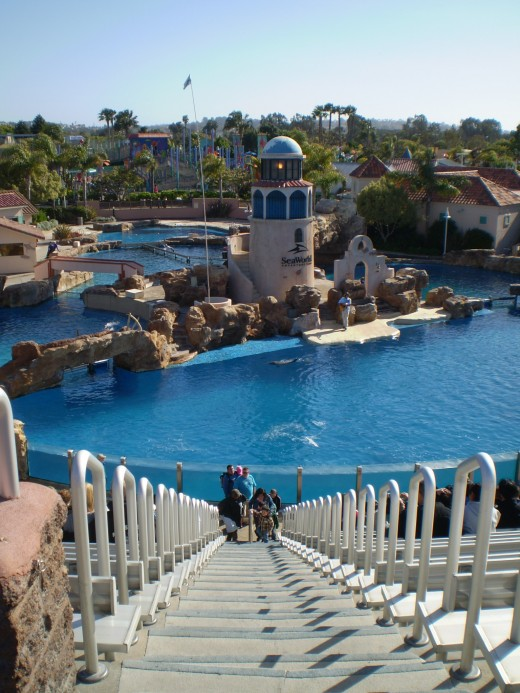 Sea World San Diego. Looking down into the dolphin stadium.