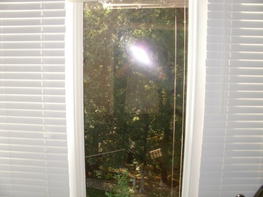 Tinted window view from inside the house, note the amber soft glow of the tint, with no blocking of your view.