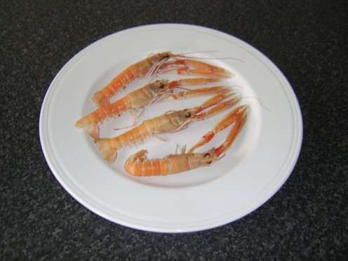 What would you call these delectable creatures? Prawns, langoustines, shrimp, Dublin Bay prawns, Norwegian lobsters... or Nephrops norvegicus?