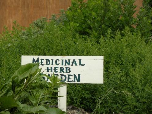 Crystal's herb garden