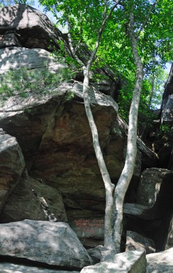 The boulder strewn Indian Caves area