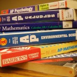 The AP Test: Choosing The Best Cram Book