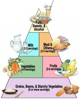 Food pyramid of Diabetes Treatment