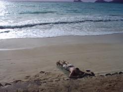 Relaxing on a beach