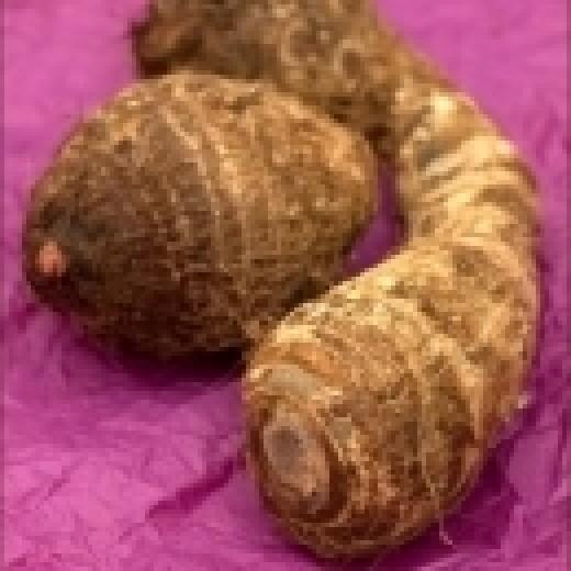 Tannia or Yautia root