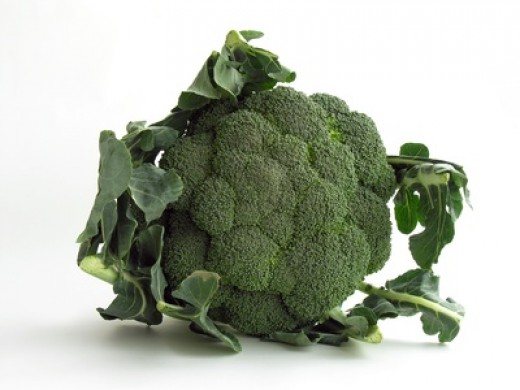broccoli - gas producer