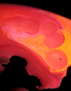 Aspect 688-P FLUIDISM Art Photography by Robert G. Kernodle