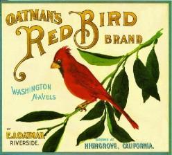 free cross stitch Red Bird orange crate pattern