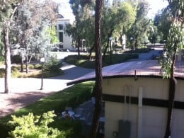 A view of the coffee kiosk from the second floor of Green Library.