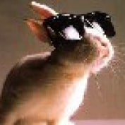 dysfakto profile image