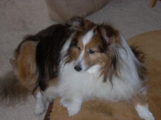 Chloe age 12.