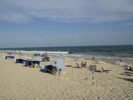 On the beautiful sandy beaches