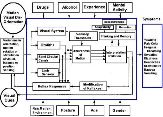 MODEL OF MOTION SICKNESS
