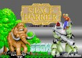 Space Harrier Arcade Game