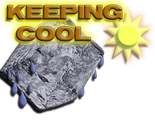 Keeping Your Cool in Hot Weather