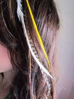 source featherextensions