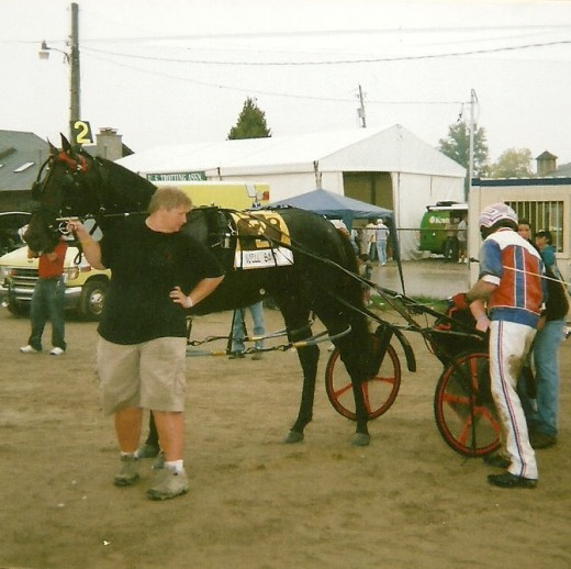 "Well Said ""suits up"" for his final heat at the 2009 Little Brown Jug."