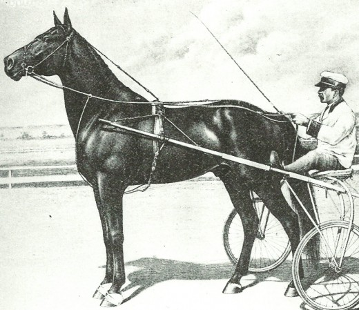 Dan Patch, early Standardbred pacing's world record breaker.