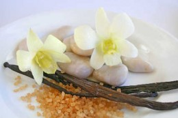 Vanilla bean pods and flower