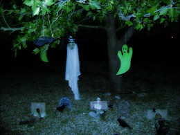 The graveyard in the front yard.  Bones, crows, bats  and my pirate ghost make for an interesting view coming up to the front door.