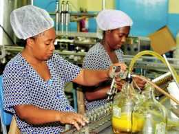 Assembly line workers at Jamaican factory