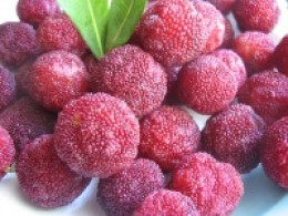 Chinese bayberry