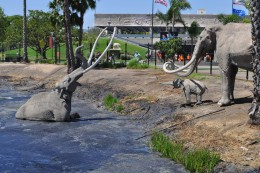 This was natures own trap. If an animal got caught, other animals will either prey on them or come to their aid. Because of this, La Brea Tar Pits has recovered several fossils from the Ice Age.