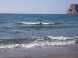 Chennai beach, Marina beach, second longest beach, Anna Square, MGR Samadhi, Nappier Bridge