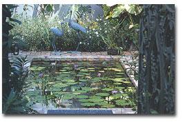 Audubon House Tropical Gardens