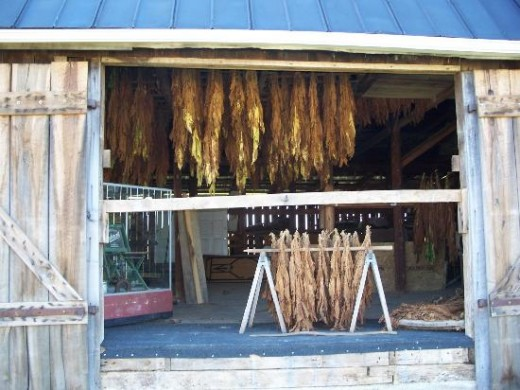 The Tobacco Barn