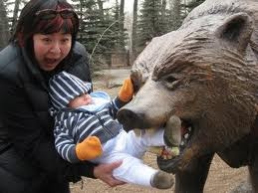 PEOPLE DO NOT TAKE BEARS SERIOUSLY