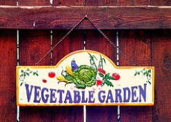 Preventing Back Injuries And Muscle Strains While Working In Your Garden