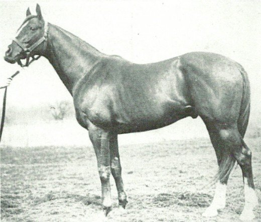 Star Shoot sired Sir Barton, America's first Triple Crown champion.