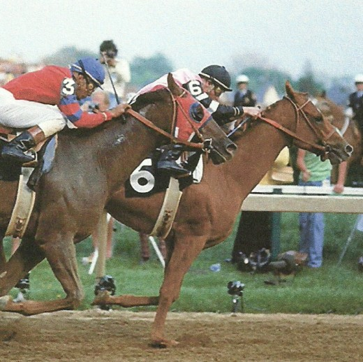Affirmed and Alydar contested all three American Triple Crown races in 1978.